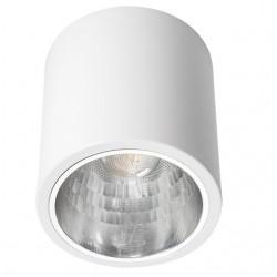 Aufbau-Downlight NIKOR DLP-75-W Kanlux 7211